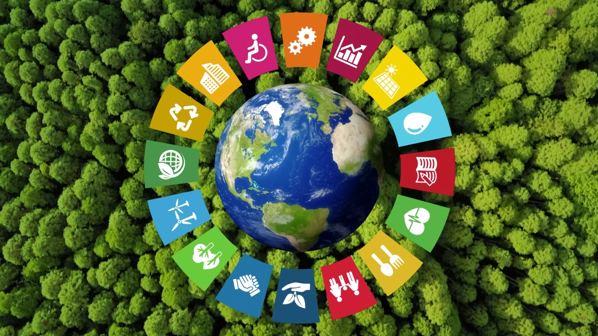 Sustainable development—50 years of progress